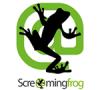 cursos-de-screaming-frog